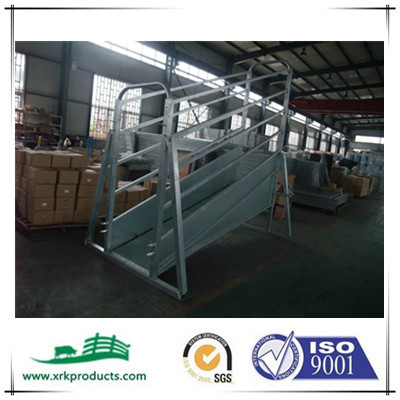 Adjustable cattle loading ramps